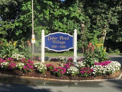 Lynnfield Condo/Townhouse For Sale: 1100 Salem St. #46