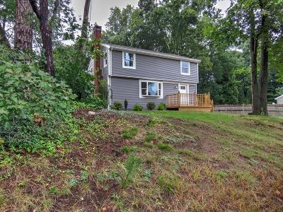 Stoughton Single Family Home For Sale: 86 Larson Road