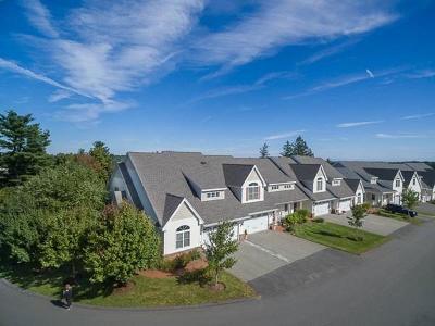 Danvers Condo/Townhouse For Sale: 100 Kirkbride Drive #245