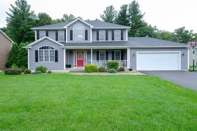 Ludlow Single Family Home Under Agreement: 77 Allison Ln