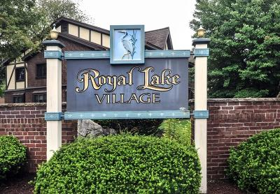 Braintree Condo/Townhouse Contingent: 10 Royal Lake Drive #4