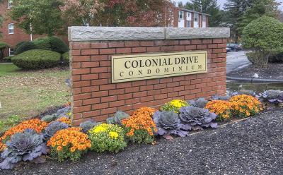 Andover Condo/Townhouse Sold: 2 Colonial Dr #4A