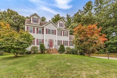 Billerica Single Family Home For Sale: 161 Allen Rd