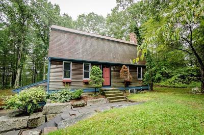 Kingston Single Family Home For Sale: 324 Elm St