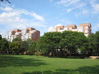 cambridge Rental For Rent: 975 Memorial Drive #808