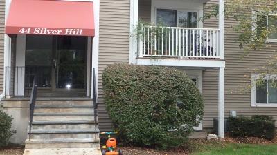 Natick Condo/Townhouse For Sale: 44 Silver Hill Ln #15
