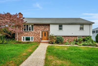 Dedham Single Family Home For Sale: 27 Mulberry Lane