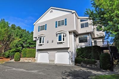 Bellingham Condo/Townhouse Under Agreement: 1003 Old Bridge Lane #1003