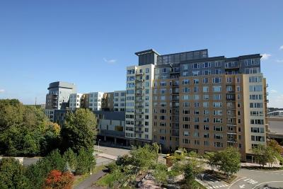 Natick Condo/Townhouse For Sale: 40 Nouvelle Way #N351