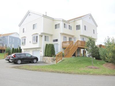 Ashland Condo/Townhouse For Sale: 204 America Blvd #204