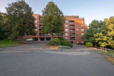 Reading MA Condo/Townhouse For Sale: $344,900