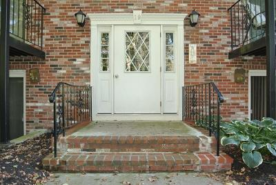 Canton Condo/Townhouse Under Agreement: 19 Pine St #G