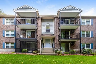 Holbrook Condo/Townhouse For Sale: 610 S Franklin St #F202