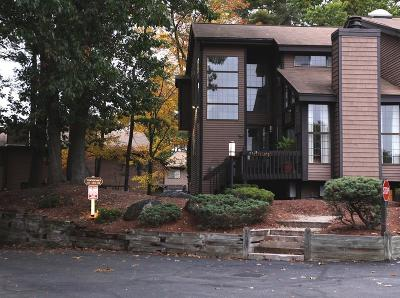 chelmsford Condo/Townhouse New: 255 North Rd #120