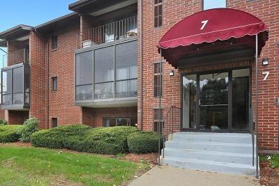 Brockton Condo/Townhouse New: 221 Oak Street #7-11