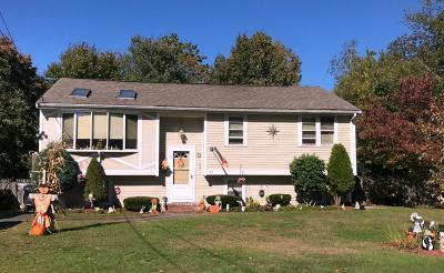 Brockton Single Family Home New: 85 Hubbard Ave