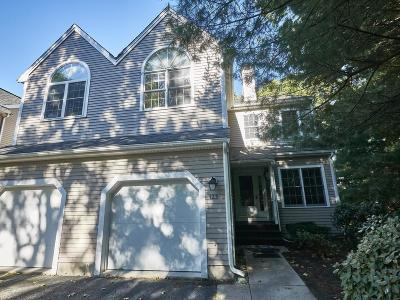 Waltham Condo/Townhouse New: 123 Bishops Forest Dr #123