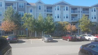 Reading Condo/Townhouse For Sale: 9 Abigail Way #3011
