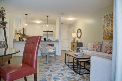 Middleboro Rental For Rent: 2 Evergreen Drive #424