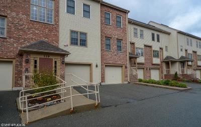 Canton Condo/Townhouse For Sale: 119 Revere St #E