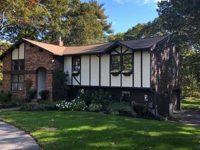 Freetown Single Family Home For Sale: 23 Ledgeview Drive