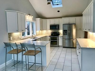 Framingham Single Family Home For Sale: 12 Doyle Cir