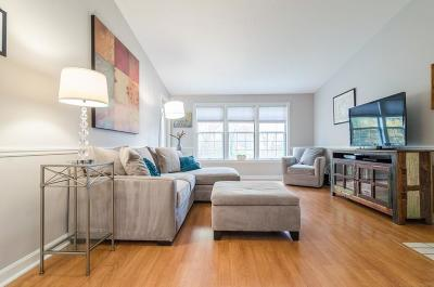Natick Condo/Townhouse Under Agreement: 12 Squire Ct #14