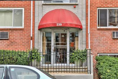 Condo/Townhouse Under Agreement: 239 Kelton St #14