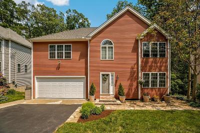 Framingham Single Family Home For Sale: 49 Gates St