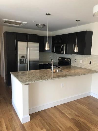 Rental For Rent: 110 South Street #2
