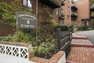 Condo/Townhouse Under Agreement: 171 South St #20B