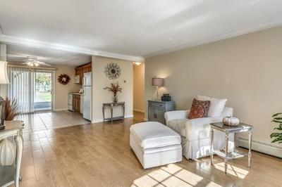 Andover Condo/Townhouse Sold: 20a Washington Park Drive #2