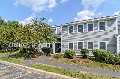 Hingham Condo/Townhouse Contingent: 3003 Hockley Drive #3003