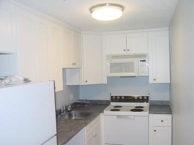 Arlington Condo/Townhouse Sold: 12 Pond Lane #21