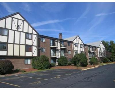 Randolph Condo/Townhouse For Sale: 159 Bittersweet Ln #114
