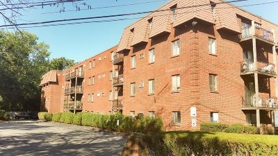 Reading Condo/Townhouse Under Agreement: 5 Washington St Unit D1 #D1