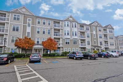 Waltham Condo/Townhouse For Sale: 107 Clocktower Dr #3406