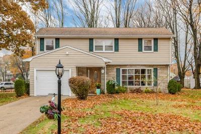 Brockton Single Family Home For Sale: 90 Raymond Rd