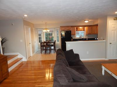 Quincy Condo/Townhouse New: 2 Ricciuti Drive #6