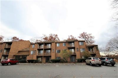 Methuen, Lowell, Haverhill Condo/Townhouse New: 132 West Meadow Rd #26