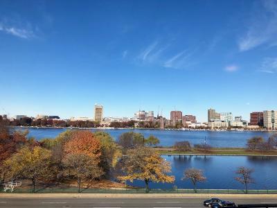 Boston, Cambridge Rental New: 336 Beacon Street #9