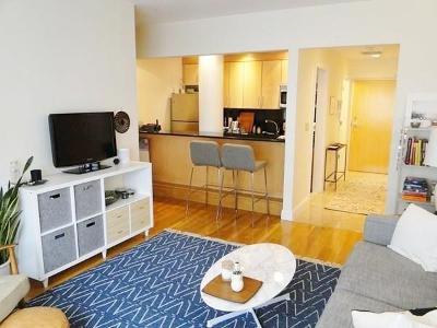 Boston Condo/Townhouse New: 42 Beach Street #8A