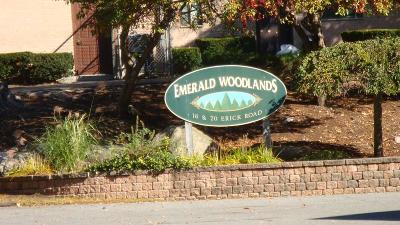 Mansfield Condo/Townhouse New: 20 Erick Rd #7