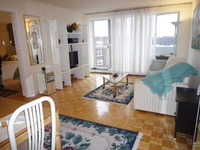 Cambridge Rental New: 29 Concord Ave. #714