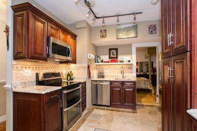 Boston Condo/Townhouse For Sale: 8 Ransom Rd #16
