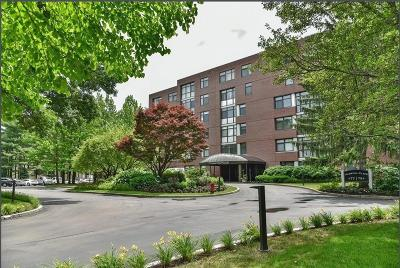 Newton Condo/Townhouse For Sale: 77 Florence St #407N