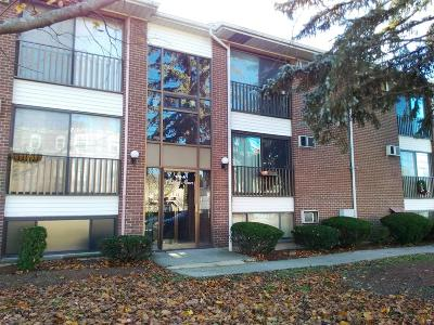 Waltham Condo/Townhouse For Sale: 172 River St. #A8