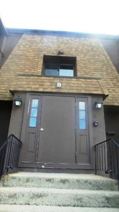 Franklin Condo/Townhouse New: 491 W Central St #B12