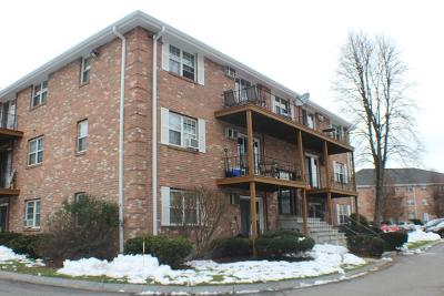 Billerica Condo/Townhouse Sold: 7 Karen Cir #11