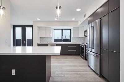 Boston Multi Family Home New: 85 Willow Ct